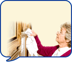 image of lady dusting
